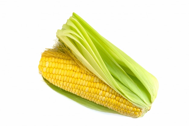 Свежая кукуруза на белом фоне
