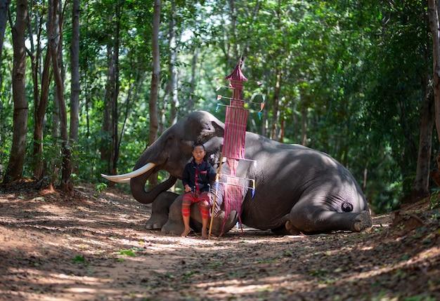 Мальчик в традиционном костюме и слон сидит в лесу
