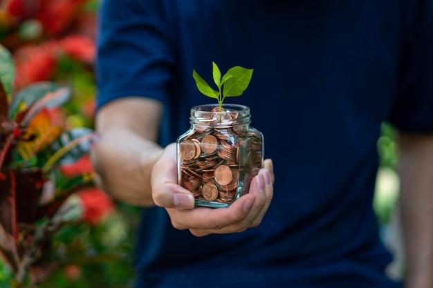 男はコインとガラス瓶で成長している緑の植物を表示します。