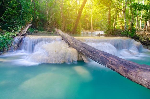 深い森、タイの背景の滝