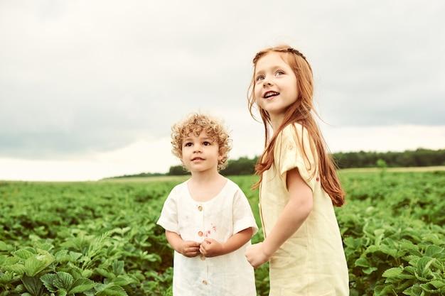 Две милые дети мальчик и девочка, сбор клубники в поле и с удовольствием