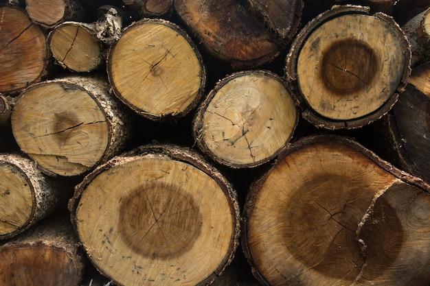 鋸の後の木の断面