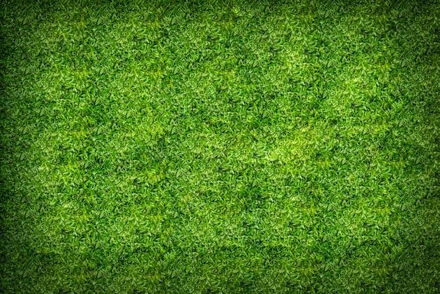 緑の芝生のテクスチャ背景
