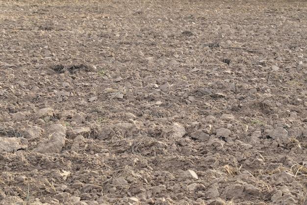 耕作後の植え付けのための空き地。