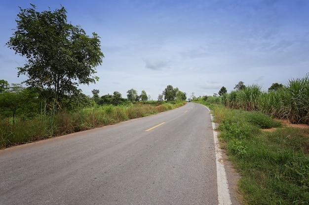 の間の両側に木々のある農村道路。