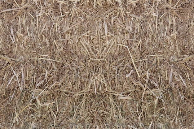 稲わらの表面。