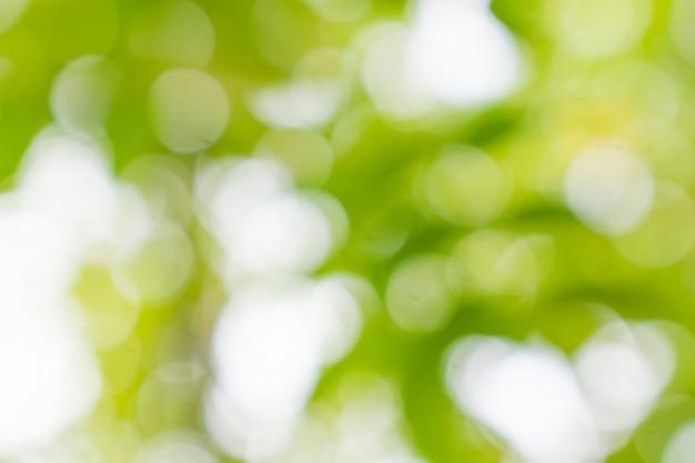 抽象的な緑のボケの背景
