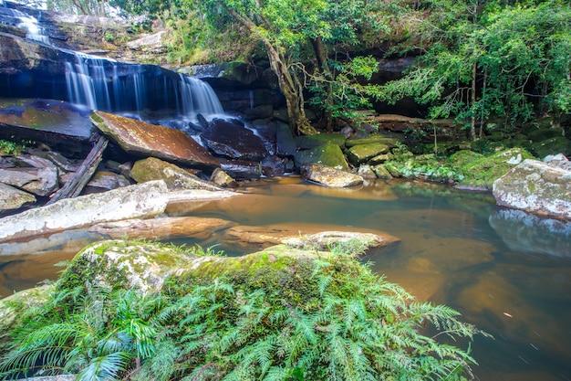 アジアのプークラドゥン国立公園で秋の間に緑の森の滝