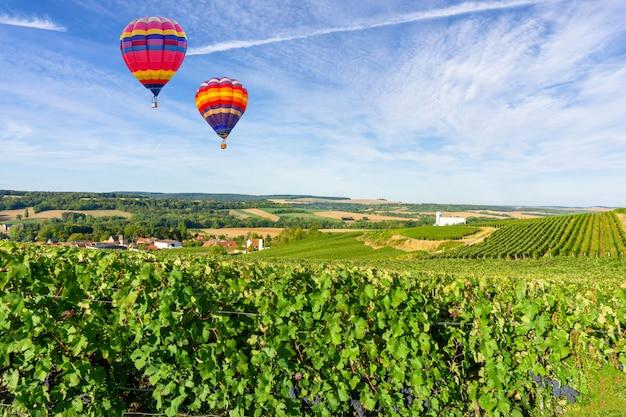 シャンパンのブドウ園の上を飛んでいる熱気球