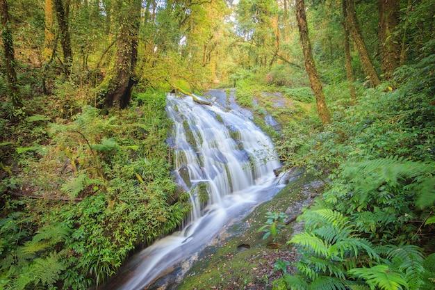 Водопад в холме вечнозеленого леса дои интанон, чианг май, таиланд