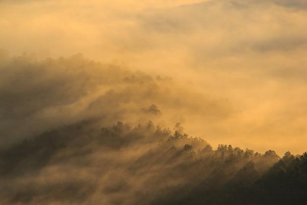 日の出時の霧の中の山の層。暖かいトーンを編集