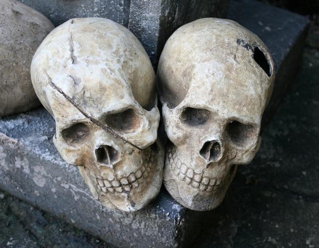 人間の頭蓋骨は、岩