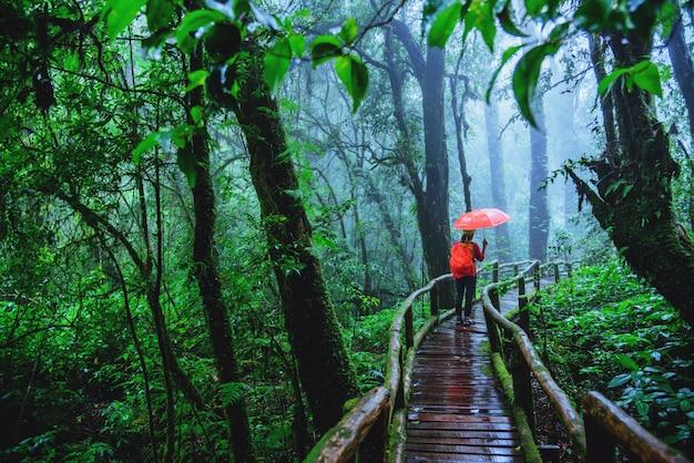 タイのチェンマイでジャングルの中でアジアの女性。