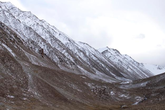 山頂に雪が降るヒマラヤ山