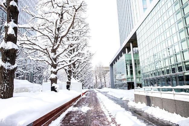 Красивый, зимний снег в саппоро, хоккайдо, япония