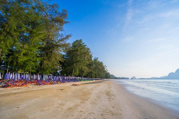アオマナオ、夏の朝、プラチュアップキリカーン、タイの海