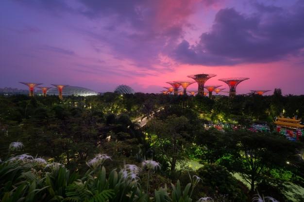 Вид с воздуха на сад у залива утром. сингапур