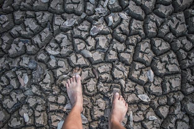 スタンドの足に土壌の干ばつ領域を割る。