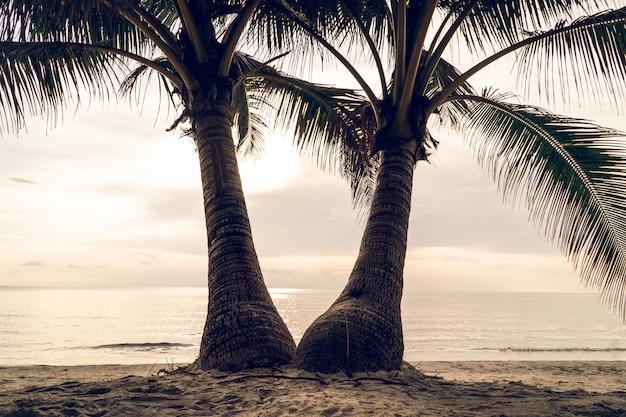 海とビーチの眺め