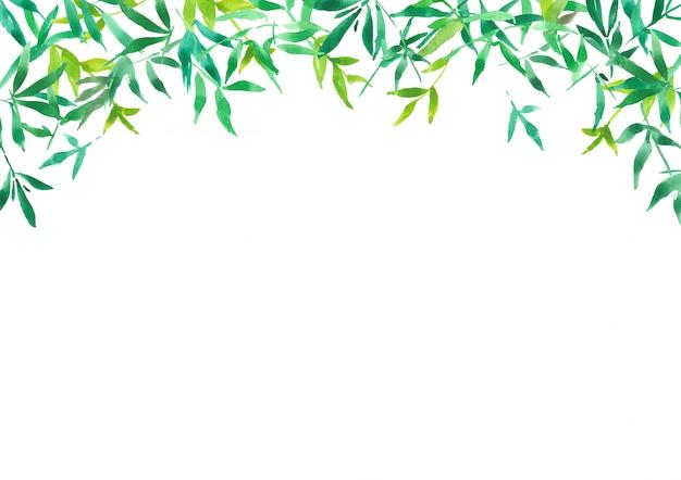 緑の竹の葉の背景、水彩イラスト