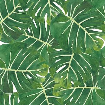 緑のモンステラの葉のシームレスパターン水彩画