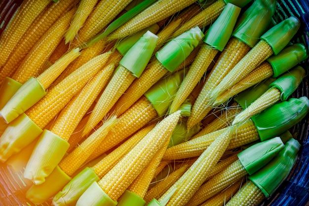 小型の成熟トウモロコシまたはトウモロコシ
