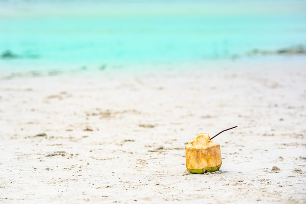 夏の緑の海の砂浜で飲むためのココナッツ