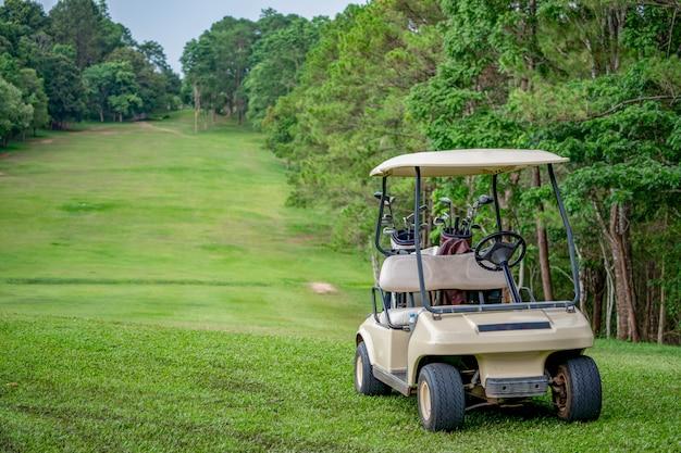 丘の上のゴルフコースのフェアウェイにゴルフカート