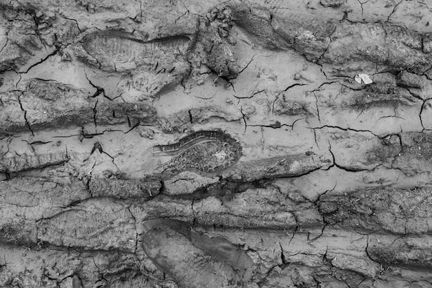 汚れの足跡。