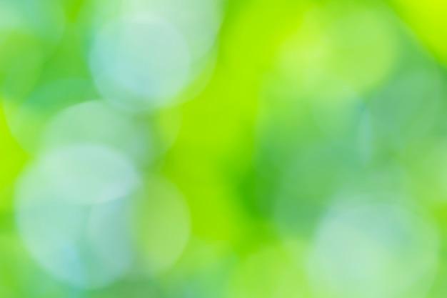 Естественный зеленый размытый фон