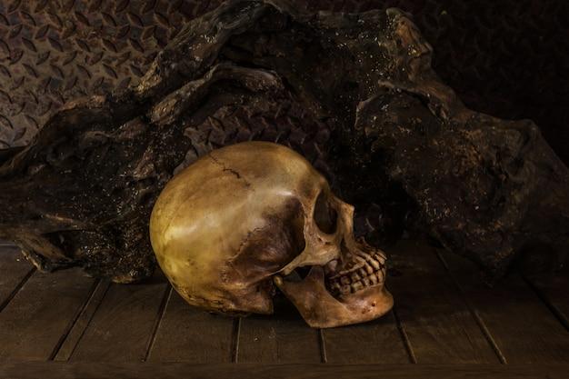 頭蓋骨のある静物。