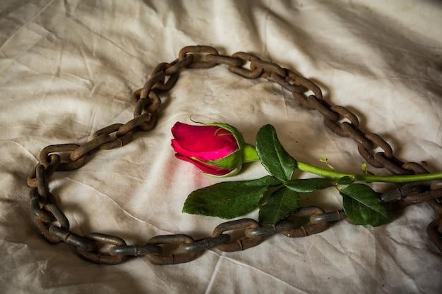 静物画の比喩的なバラ。