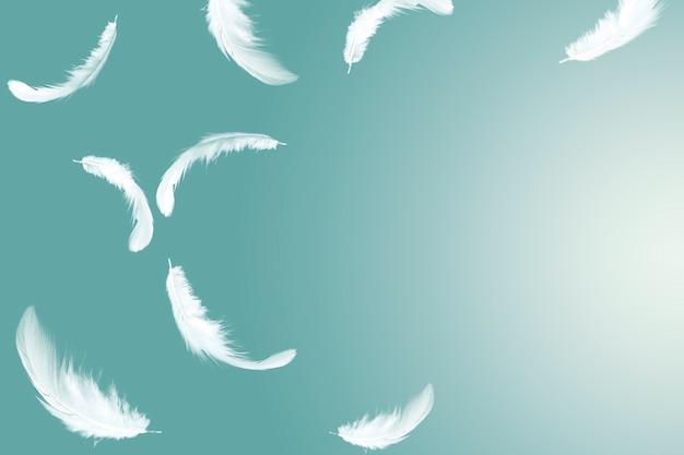 空中に浮かぶ抽象的な白い羽根