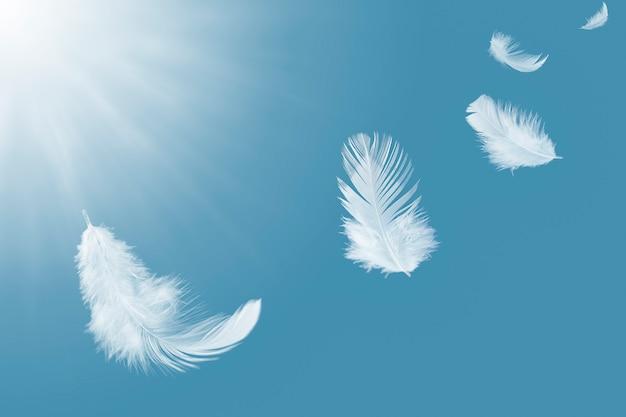 Белое перо, плавающее в небе.