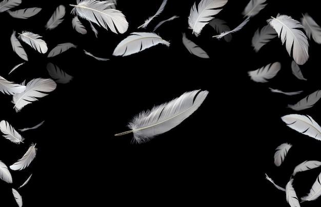 白い羽が空気中に落ちて