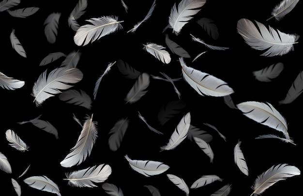 空気中に浮かぶ白い羽