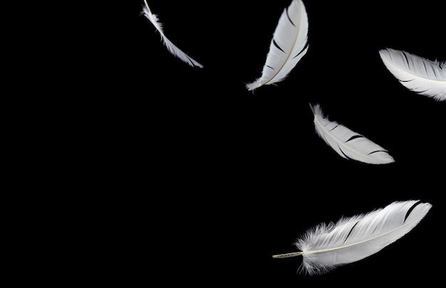 Белые перья птиц, плавающие в воздухе