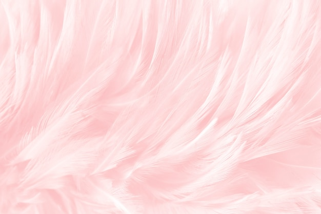 Мягкие розовые перья