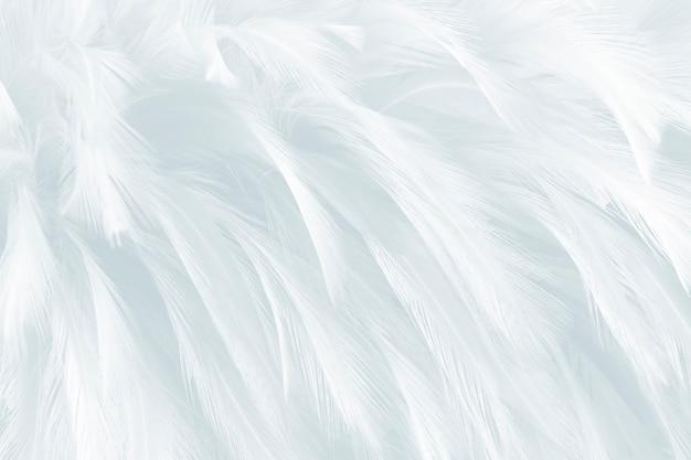 Фон белые перья