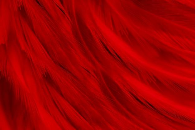 Фон красные темные перья