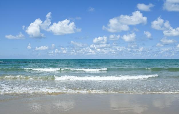 空とビーチを背景に。