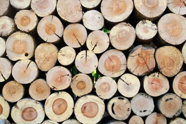 天然木の丸太、背景の断面