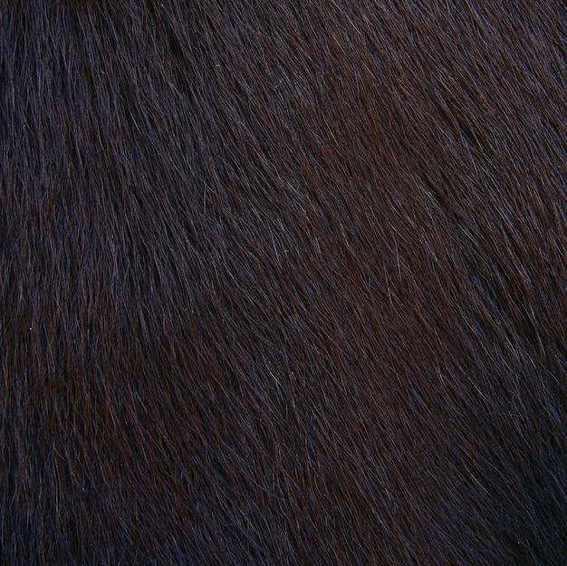 馬毛質、毛皮