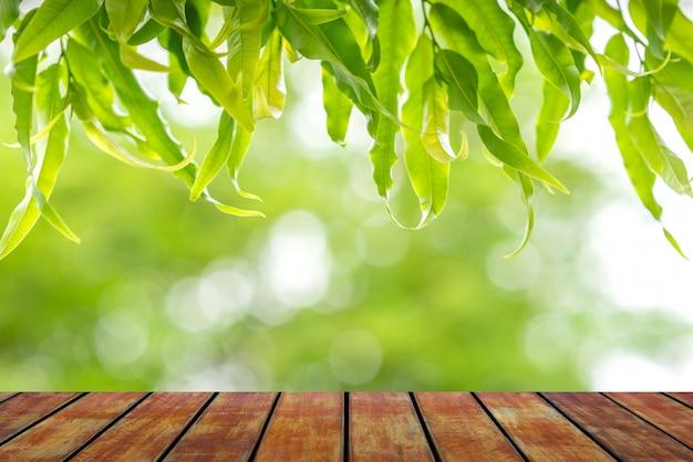 木の床と葉の自然