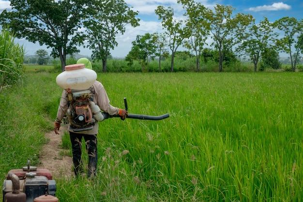 アジアのタイの農民が除草剤や化学肥料に