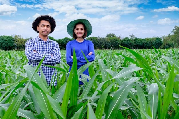 アジアの農民カップルタイのトウモロコシ農場で立っています。