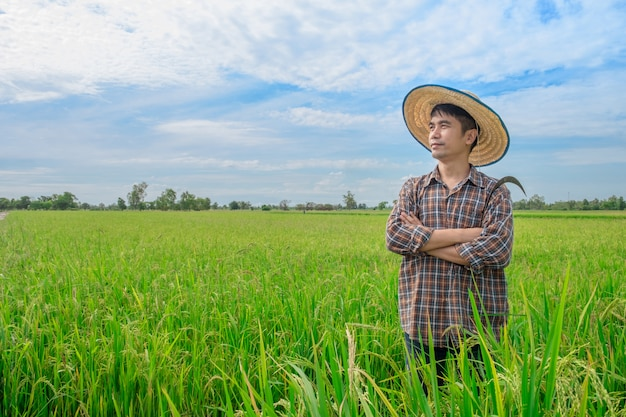 Стойка азиатских фермеров мужская смотря небо с усмехаясь сторонами на зеленых полях риса и голубых небесах.