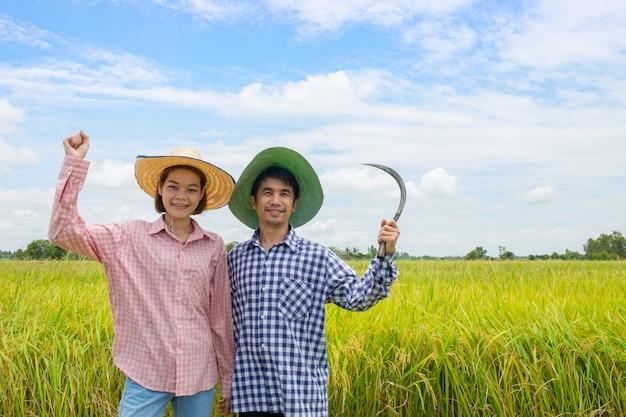 黄金の田んぼで鎌を持って幸せな持ち上がる腕を立っている笑顔のアジアの農家のカップルの男性と女性