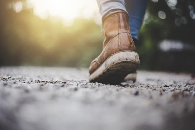 Женщины-путешественники, идущие по дороге в лес