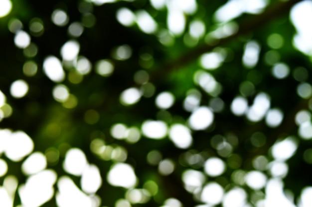 緑色の背景の多くのボケライト